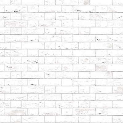 Embossed White Brick Flemish Bond